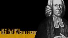 20090324_george-whitefield-the-evangelist_medium_img