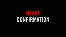 20100610_heart-confirmation-discerning-gods-call_medium_img