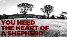 20100906_want-to-be-a-pastor-you-need-the-heart-of-a-shepherd_medium_img