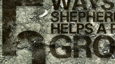 20100927_5-ways-shepherding-helps-a-pastor-grow_medium_img