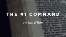 20120209_the-1-command-in-the-bible_medium_img