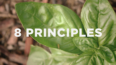 20120507_8-principles-for-churches-that-want-to-grow_medium_img