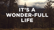 20121220_its-a-wonder-full-life_medium_img