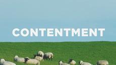 20130521_contentment_medium_img