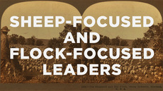 20140118_sheep-focused-and-flock-focused-leaders_medium_img