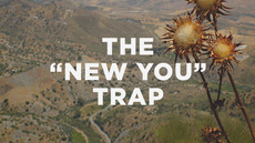 20140130_the-new-you-trap_medium_img
